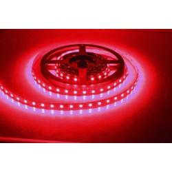 KCL001 (5050) 3ÇİP SİLİKONSUZ 30 LED ŞERİTKIRMIZI